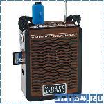 Радиоприемник Waxiba XB-907U (Фонарик, USB, TF, SD, AUX, Наушники, Аккумулятор, 220V)